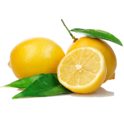 Lemon - Zitrone