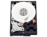 "HD WD Blue 3.5"" 1TB  SATA-III"