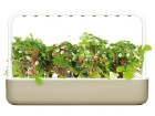 Click and Grow Kräutertopf Smart Garden 9 Beige